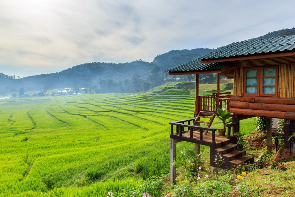 שיפוצים בית ירוק